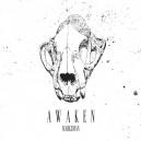 MARKSMAN-Awaken LP + CD
